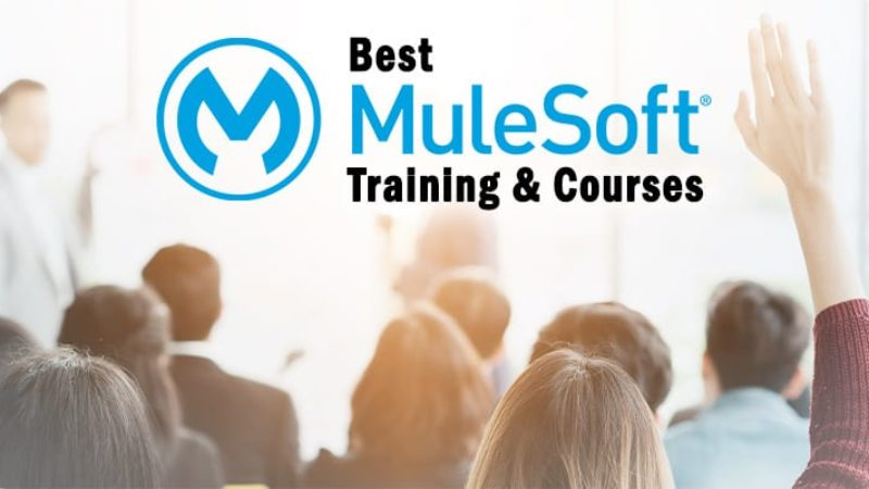 The 5 best MuleSoft training and online courses to consider for 2021